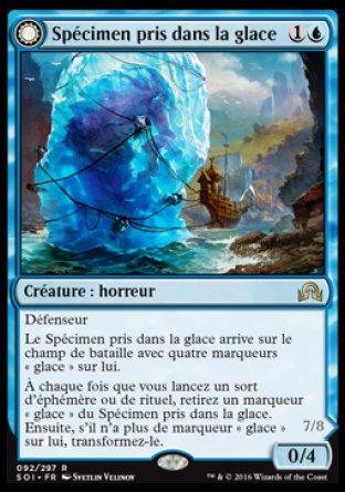 Spécimen pris dans la glace